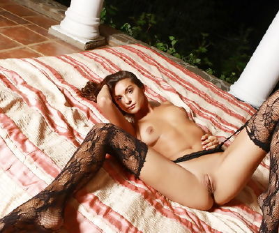 Small tits erotic beauty in lingerie has a totally shaved pussy to model